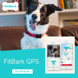 Fit Bark
